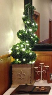 Topiary Tree with Fairy Lights - Spiral